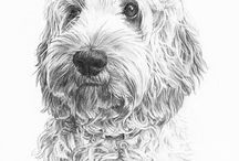 Anna Bregman Portraits of Pets / Here's a selection of portrait commissions of pets. I use a variety of media - graphite pencil on paper, watercolour and oil paint.