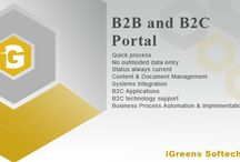 B2C and B2B portal / B2C and B2B portal