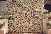 LILIRENA. Ściany kwiatów