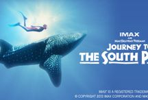 Journey to the South Pacific / A breathtaking IMAX® adventure to the lush tropical islands of remote West Papua, where life flourishes above and below the sea.