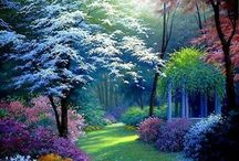 MESMERIZING GARDENS AND LANDSCAPES