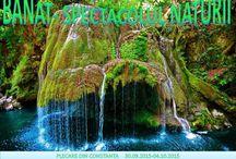 BANAT - spectacolul naturii / Daca iti place sa calatoresti, sa explorezi dar si sa te relaxezi la SPA, vino alaturi de noi sa descoperi spectacolul naturii intr-o excursie in BANAT. Servicii incluse: -Tranport cu aurocarul pe ruta Constanta – Baile Herculane si retur -4 nopti cazare cu mic dejun la Hotel Diana 3*, Baile Herculane -Excursia la Cazanele Dunarii cu croaziera pe Dunare -Excursia la Cascada Bigar si Cheile Nerei -Insotitor de grup http://www.expolitoralturism.ro/circuite-autocar/banat-spectacolul-naturii/