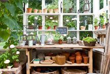 Greenhouse/workshop