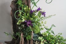 Driftwood arrangements