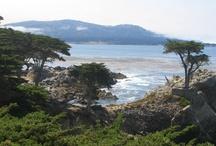 Favorite Places & Spaces / San Francisco