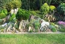 Zahradnicení / zahrada