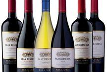Viña Errazuriz / Maak kennis met Viña Errazuriz, een prachtig en divers wijnhuis uit Chili. Errazuriz is in 1870 opgericht en heeft op diverse locaties in Chili wijngaarden.  Het team is zeer toegewijd en gefocust op de productie van wijnen met een kenmerkende stijl met de best mogelijke kwaliteit wijn waarbij ze altijd trouw blijven aan de terroir.