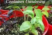 Gardening & Local Food