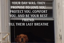 Dog lover / by Daisy Vazquez