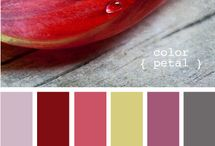 scrapbook/color palette ideas / by Nancy Brandt