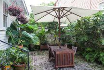 Livorno Backyard