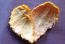 Alles / Mooi mandarijntje...