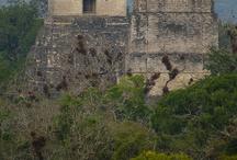 Archeology Guatemala