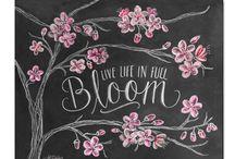 Chalk board ideas / by Cynthia Landry