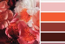 Color Story / Color trends for fall 2015: Orange Red, burgundy, caramel brown, navy, fuchsia and teal. Chocolate brown, taupe, silver and grey too.