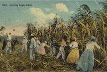 L'esclavage au féminin à Saint-Domingue