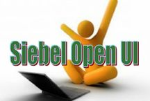 Do you think Siebel Open UI developer friendly CRM application? How can you measure it?