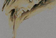 P.Jezus / by Irenasz