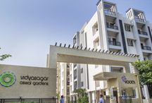 "Apartments - Vidyasagar ""Oswal Gardens"" / Vidyasagar ""Oswal Gardens"" - 880 magnificent 2, 3 and 4 BHK homes located in the heart of the city on the Cochrane Basin Road in Korukkupet, Chennai. The Largest for any housing project within the City."