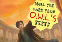 Harry Potter / Here is EVERYTHING for nerdy Harry Potter fans
