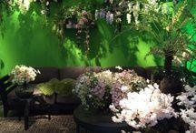 09-10-2016 Silka SS17 / Vandaag zijn de meiden op bezoek bij Silk-ka Zijde Bloemen om de nieuwe voorjaars collectie voor 2017 uit te zoeken.