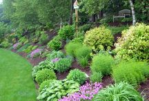 garden steep slope