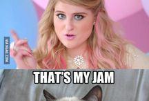 grumpy cat funny crap