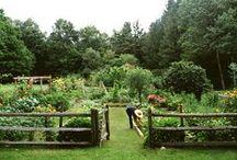 inspirace zahrady
