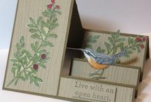 Card Making: Step Cards