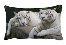 Home Decor / Add a little sumthin sumthin to your home decor