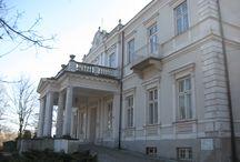 Częstocice - Pałac