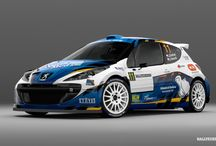 Dohnal Rally - J. Dohnal (Peugeot 207 S2000) / Design and wrap. First seen at Rally Jeseníky 2013.