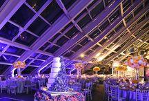 Adler Planetarium Weddings / Adler Planetarium Weddings  Carasco Photography http://www.carascophoto.com