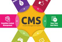 CMS Solutions / One Web Platform, Numerous Opportunities!