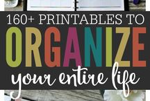 Binder and organization