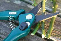 Florist's Tools & Supplies