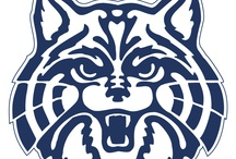 Wildcats! / University of Arizona