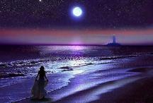 Moonlit Nights / .