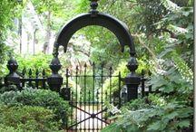 jardin. / by Sarah Coleman Hunt