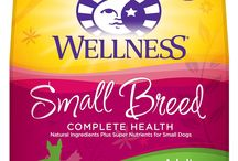 Best Dog Food for Small Dogs / Have you thought much about what goes into choosing the right food for your small breed dog? Use our guide and reviews to find the best dog food for small dogs.  Read our reviews here: https://www.munch.zone/best-dog-food-for-small-dogs/  ----------  Disclosure:  The Munch Zone is a participant in the Amazon Services LLC Associates Program, an affiliate advertising program designed to provide a means for sites to earn advertising fees by advertising and linking to amazon.com.