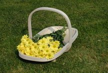 TRUGS / These are traditional hand made Sussex Trugs for gardening and other common carrying needs.