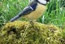 Vogels naaldvilten