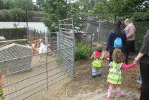 Nursery Trip Day, Monday 16th June 2014