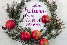 Autumn Fall Inspirations