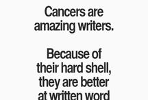Cancer Love, Cancer Life, Cancer Preferences / Aspects of the Cancer horoscope sign.