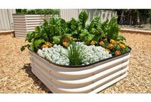 Raised Garden Beds / Raised Bed Gardening