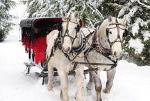 Whistler Winter Activities