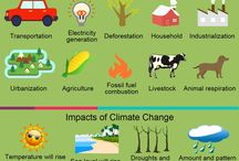 Climate Change and Animals