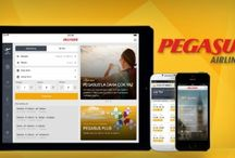 pegasus air