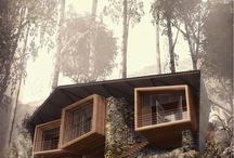 Architecture / .